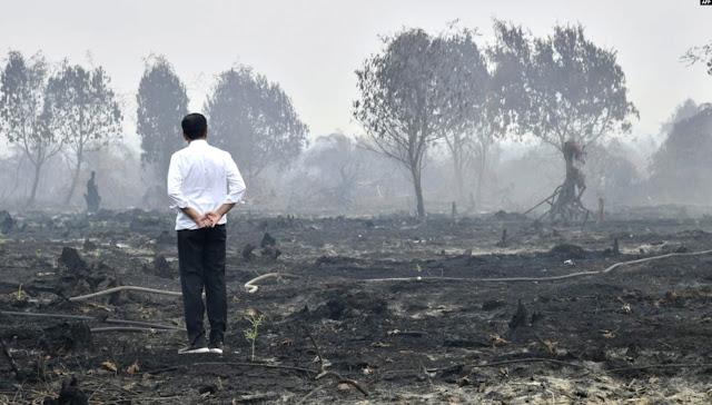 Indonesia Dapat Pendanaan Pengurangan Emisi Sebesar 103,8 Juta Dollar