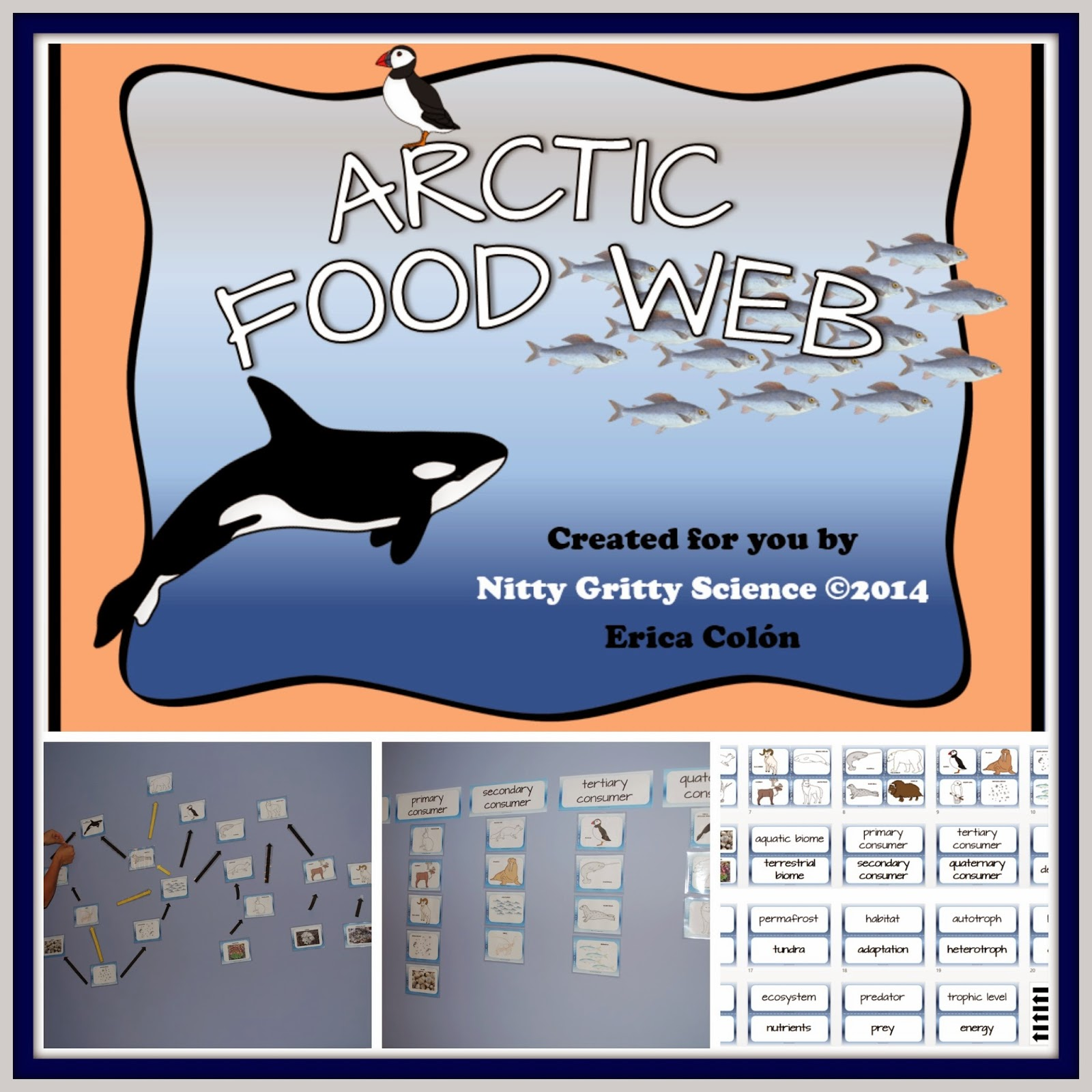 Nitty Gritty Science Arctic Food Web