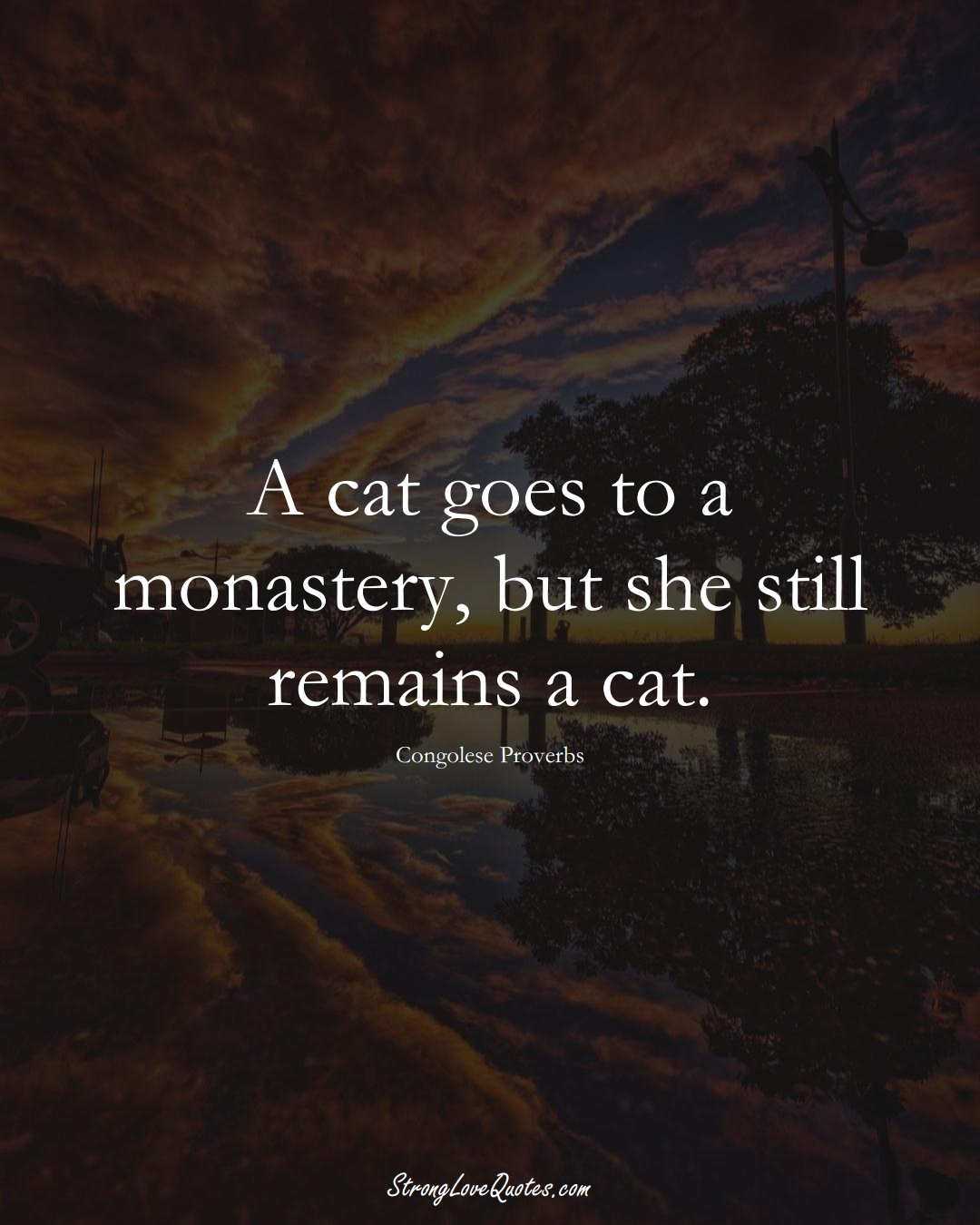 A cat goes to a monastery, but she still remains a cat. (Congolese Sayings);  #AfricanSayings