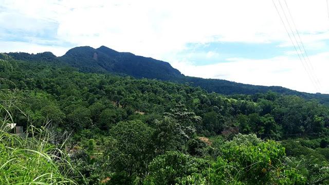 Pembangunan Berkelanjutan Berbasis Ekologi Melalui Konservasi  (Menjelang Semiloka Burung Indonesia)