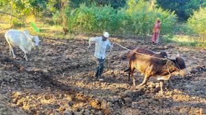 Pradhan Mantri Krishi Sinchai Yojana: How do farmers get benefits and subsidy, what are the rules?