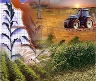 Contabilidad agrícola (Agricultura)