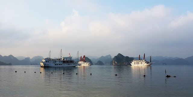 Halong bay, Vietnam: The World's Leading Beautiful Discovery Cruise