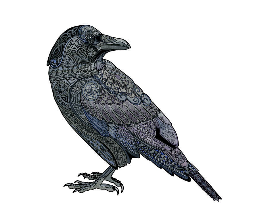 04-Celtic-Raven-Z-H-Field-Distinctive-Animal-Drawings-and-Paintings-www-designstack-co