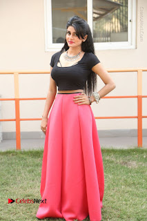 Telugu Actress Harini Stills at Dhyavudaa Movie Teaser Launch  0374.JPG