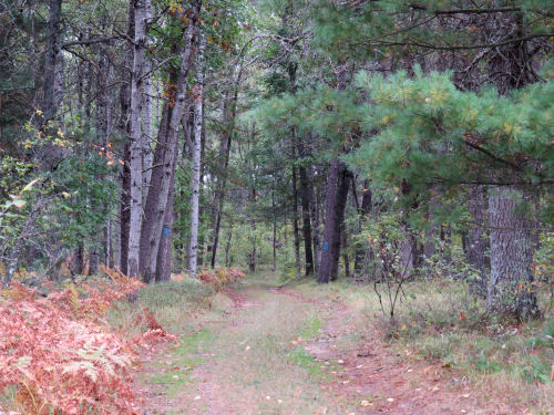 Midland to Mackinac Trail