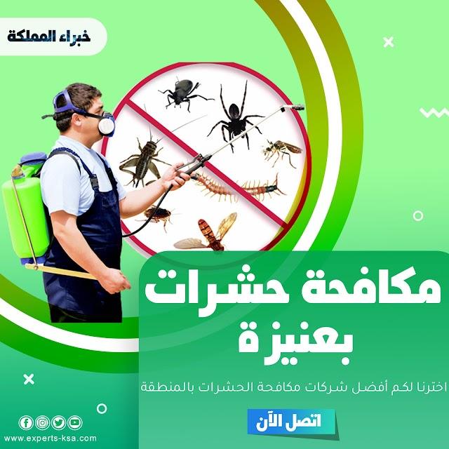 مكافحة حشرات بعنيزة | أفضل 5 شركات مكافحة حشرات ورش مبيدات في عنيزة