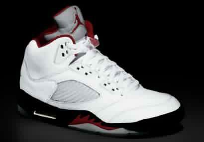 Best Air Jordan Shoe Case