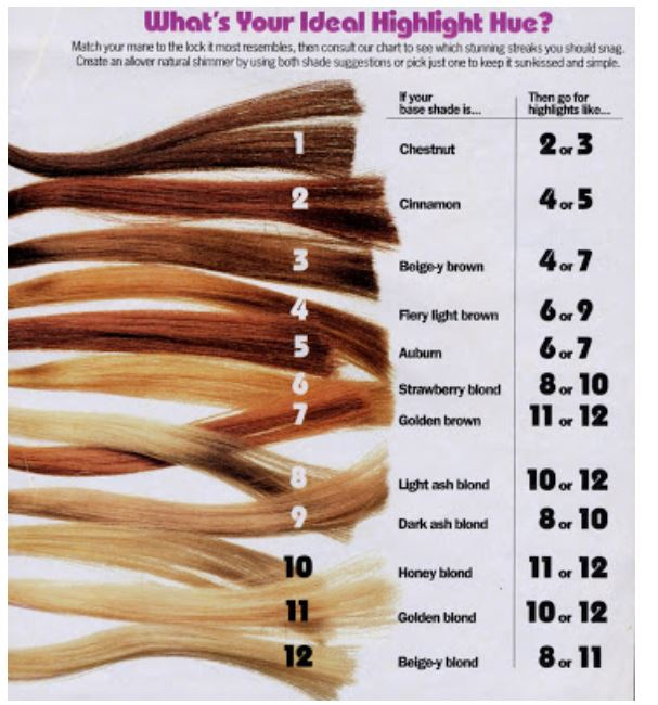Cosmetology Hair Color Chart Homeschoolingforfree