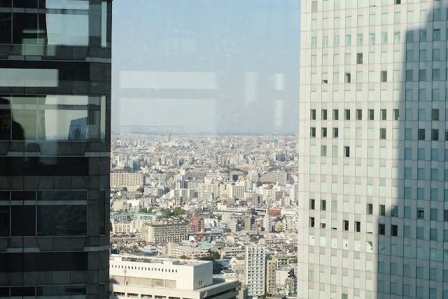 city-view-from-hqoftokyometropolitan-government 都庁からの眺め