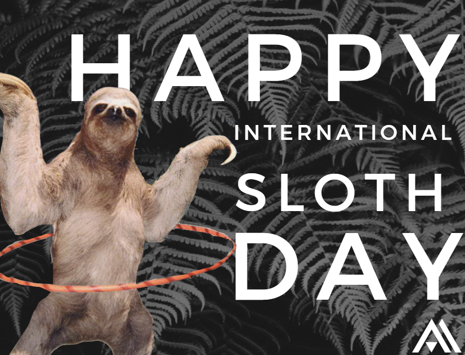 International Sloth Day Wishes Pics