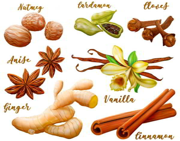 Bahan - Bahan Masakan dan Nama Bumbu Masakan Dalam Bahasa Inggris Terlengkap