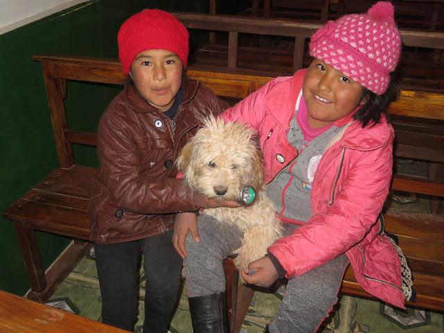 Da dürfen die Kinder ihre Hunde in den Gottesdienst mitbringen