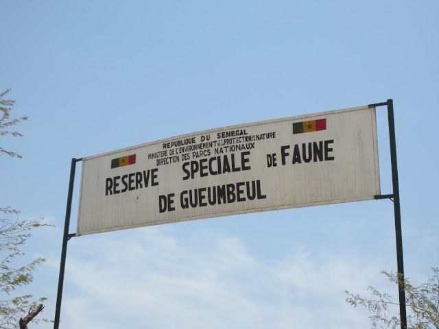 LA RESERVE DE FAUNES DE GUEMBEUL : Parc, animaux, visite, tourisme, sauvage, oiseaux, LEUKSENEGAL, Dakar, Sénégal, Afrique