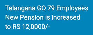 Telangana GO 79 Employees New Pension is increased to 12 Lakhs