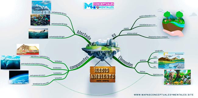 Mapa mental del medio ambiente con imágenes y dibujos, para niños o adultos