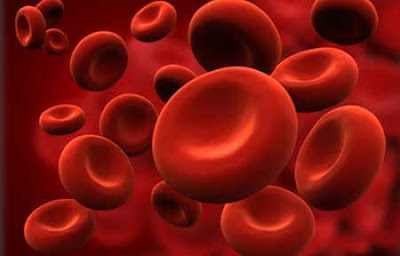 Improve hemoglobin and blood platelets naturally in your body