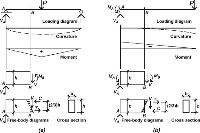 "FIGURE 4 Comparison of "" positive "" and "" negative "" bending in (a) a simply supported beam and (b) a cantilevered beam"