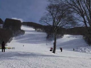 ガランとした様子の八甲田スキー場ゲレンデ