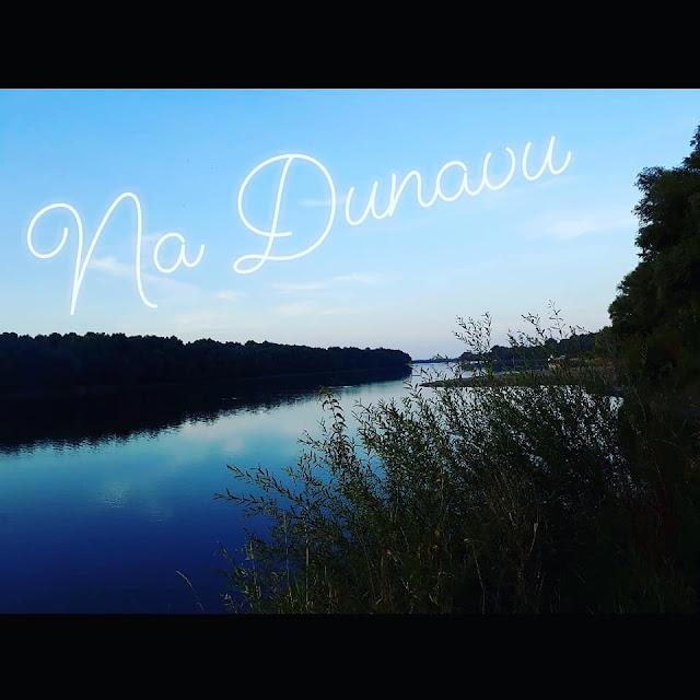 Rukavac Dunava Brazilija