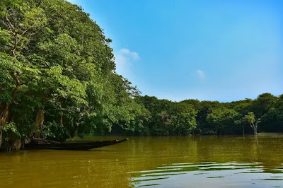 Sunderbans national park in hindi
