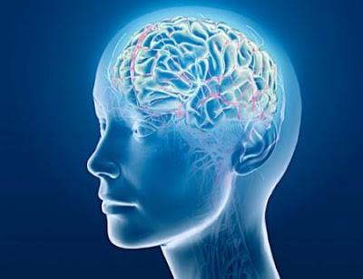 Cara Ampuh Meningkatkan IQ dan Daya Ingat Otak