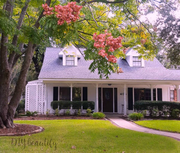 our Texas farmhouse with raintree