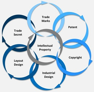 Company's Intellectual Property