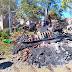 Reducidas a cenizas, tres humildes casas en Chilchota
