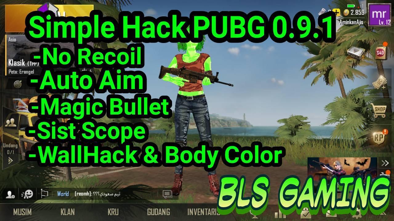 ✓SIMPLE HACK PUBG 0 9 1 NO RECOIL + ANTIBAN 100% - CHEAT NEW GAMES