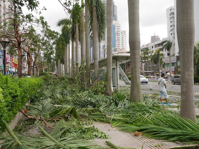 debris on sidewalks along Yingbin South Road in Zhuhai after Typhoon Hato
