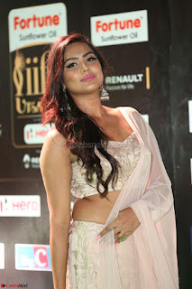 Prajna in Cream Choli transparent Saree Amazing Spicy Pics ~  Exclusive 022.JPG