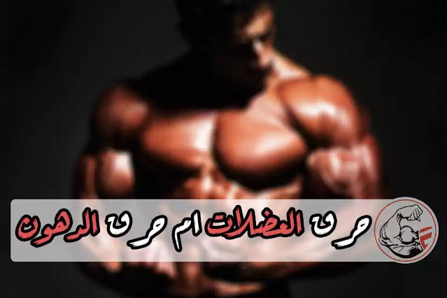 حرق العضلات ام حرق الدهون نظره علي انظمه حرق الطاقه في جسم الانسان