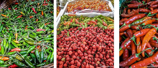 Pimentas na Ceasinha de Salvador: malagueta, biquinho e dedo de moça