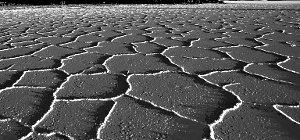il sale della terra