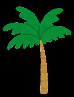 短いヤシの木のイラスト