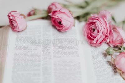 Ayat Alkitab Tentang Motivasi