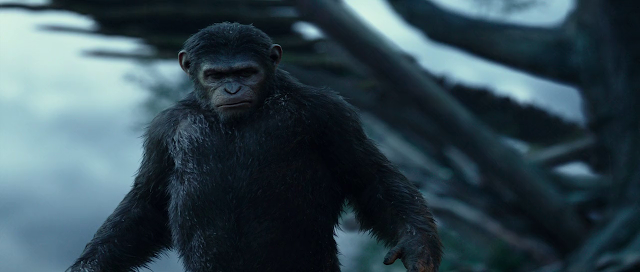 Dawn of the Planet of the Apes 2014 mobile movie 300mb mkv download
