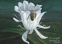 """""""पुष्प और भ्रमर"""" (myth on a flower)"""