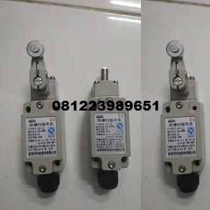 Jual Explosion Proof Limit Switch EEW  LX5 Series di Jakarta