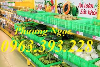 Sọt nhựa trưng bày hàng hóa, sóng nhựa đựng trái cây rau củ quả siêu thị Gioi-thieu-cac-loai-trai-cay-tuoi-dang-ban-tai-bach-hoa-xanh-1_760x507
