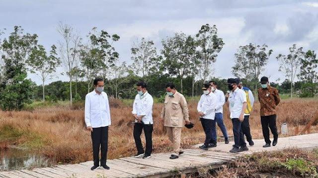 Presiden Jokowi: Perkiraan Puncak Corona Agustus atau September