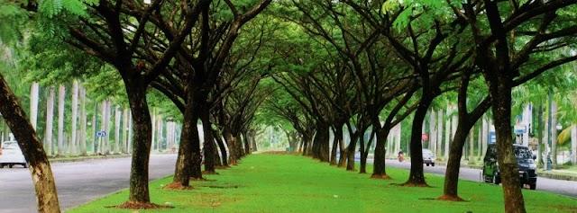 Jababeka Botanic Gardens - Kota Dengan Taman Botani