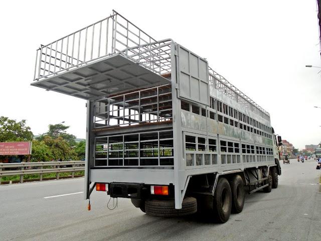Xe tải Hyundai thùng chở gia súc lợn heo