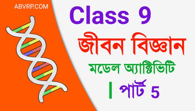 Class 9 Life science Model Activity Task part 5 | নবম শ্রেণী জীবন বিজ্ঞান মডেল অ্যাক্টিভিটি  পার্ট 5  | New Class IX Life science August 2021 part 5 model activity