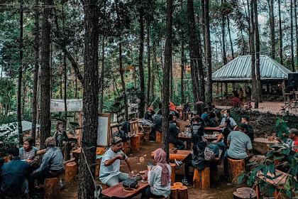 Lokasi dan Harga Menu Kedai Hutan Cempaka Prigen Pasuruan