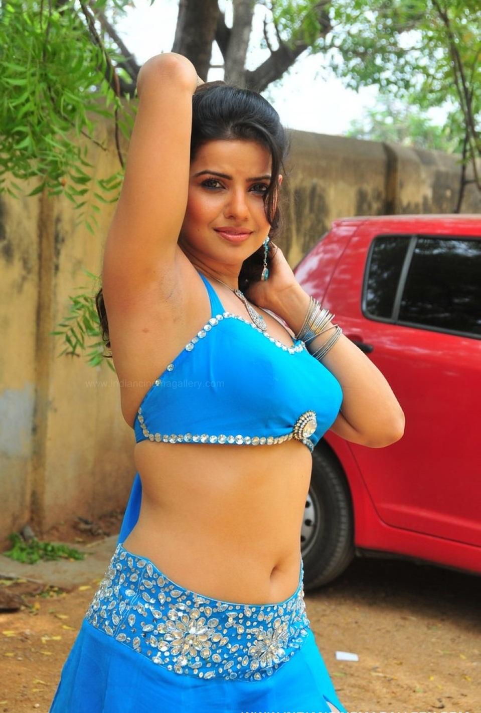 Bhojpuri Hot Actress Pic, Bhojpuri Item Girls Pic -3833