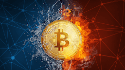 A BTC Trading Guide – Everything You Should Know!