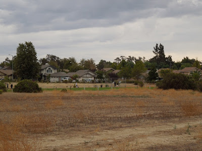 Dry Grass Contrasts with Irrigated Playing Field at Larry Moore Park, © B. Radisavljevic