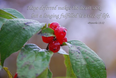 Proverbs 13:12 nature photo